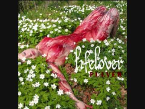 Lifelover - En Sång Om Dig