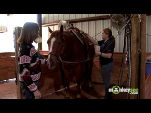 Horseback Riding - How to Saddle a Horse Western Style