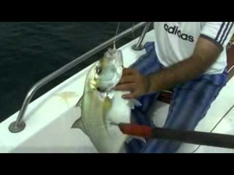 fishing in khorfakkan part 8 طلعات حداق شباب خورفكان