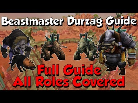 Full Beastmaster Durzag Raid Guide [Runescape 3] All Roles Explained