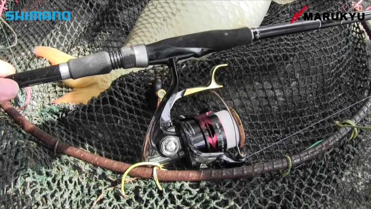 Shimano times Marukyu New fishing style in Malaysia