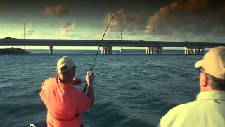 :: Sport Fishing TV :: Diablo 550 Spinning Reel