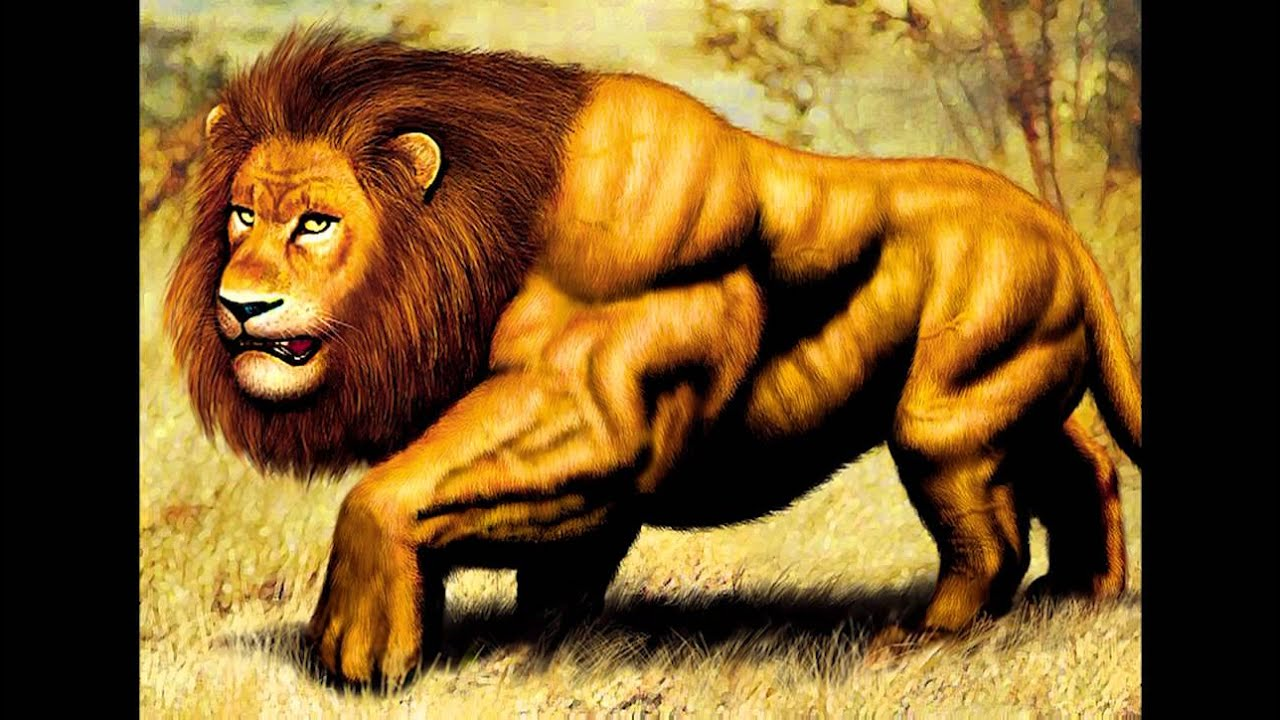 World s Biggest Lion