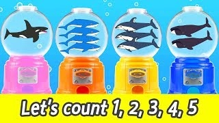 [EN] Let's count 1, 2, 3, 4, 5! with whales! numbers 1-5, kids english story, collectaㅣCoCosToy