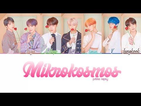 Download POLSKIE NAPISY/PL SUB BTS방탄소년단 - Mikrokosmos Mp4 baru