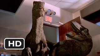 Jurassic Park (9/10) Movie CLIP - Raptors in the Kitchen (1993) HD