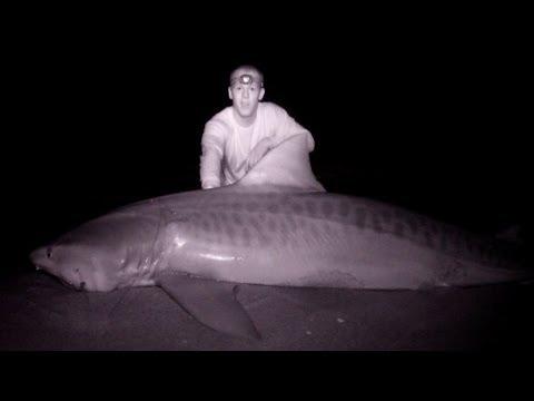 Team Rebel: Night Vision GoPro Shark Fishing