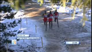 2014 European Cross Country Championships, senior men race