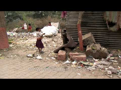 Dirty shelters of Delhi rag pickers