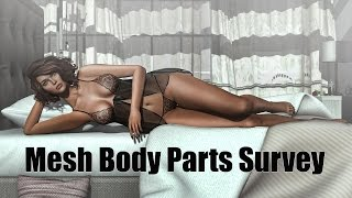 Berry's 2016 Mesh Body Parts Survey in Second Life