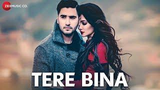 Tere Bina Official Music   Amir Sheakh   Renuca Singh