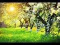 5 главных слов Природа табиат mp3