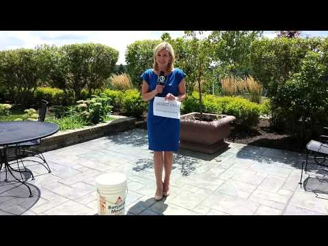 Nicole Nalepa takes the Ice Bucket Challenge for ALS