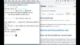 Setting Up ChromeDriver — Selenium WebDriver