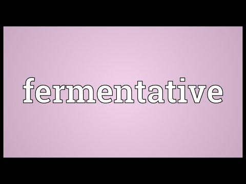 Header of fermentative
