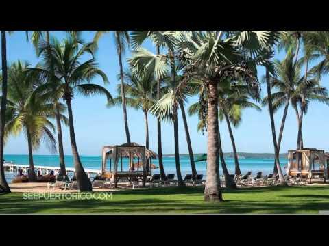 Visit Puerto Rico, the hidden gem of the Caribbean!