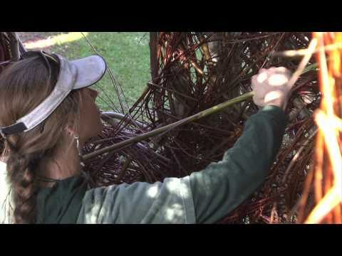 Patrick Dougherty at the Palo Alto Art Center