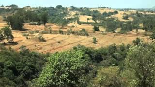 Regreening Ethiopia's Highlands