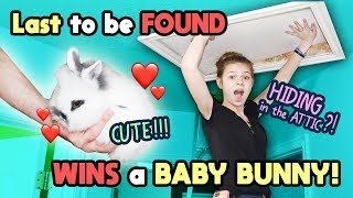 Last to Be Found WINS CUTE BABY BUNNY!! Tannerites Hide and Seek Game!
