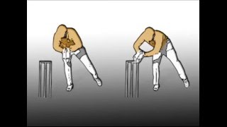 Cricket wicket keeping tips, taking ball legside standing up