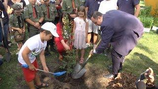 1327 drzew w Parku Śląskim