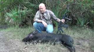 AR-15 Eotech Boar Hog Hunting One sKill by American Hoggers Tom Walker ar15 review