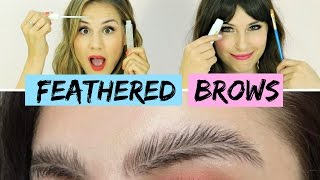 Feathered Eyebrows! (Try The Trend) | Hollywire