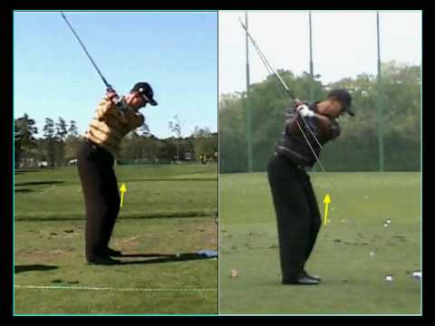 Tiger Woods & Adam Scott Backswing