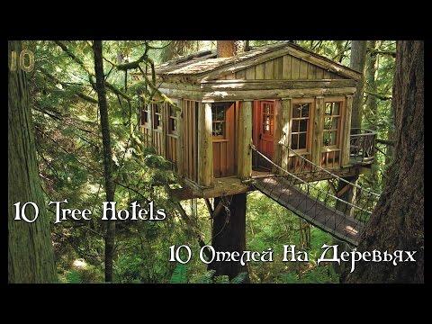 10 tree hotels 10 отелей на деревьях куда