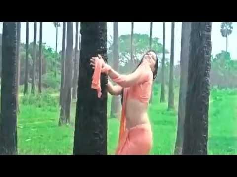 Kerala Girl Meghana Raj Wet Saree Panty Line Visible video
