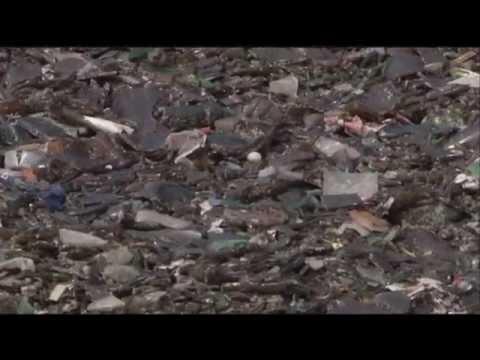 Reciclagem de vidro em São Paulo - Jornal Futura - Canal Futura