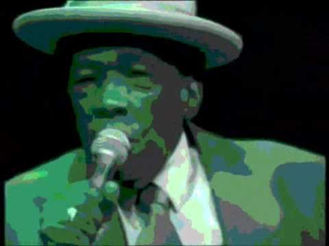 John Lee Hooker, Stevie Ray Vaughan, Robert Cray, Roy Rogers— Boogie Jam (edit version)
