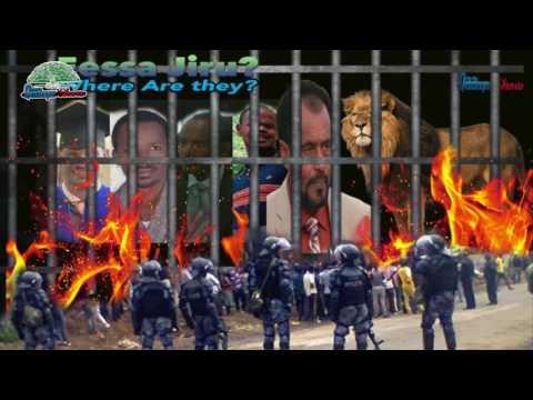 Qaanqee Show Dhaamsa Shamarran Oromoo Maraaf  Walaleessituu Oromoo irraa thumbnail