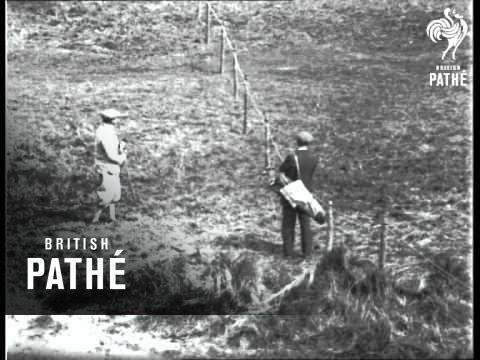 Amateur Golf  Championship (1926)