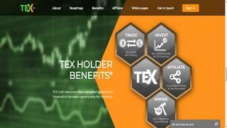 Blockchain Bitcoin - ICO Tex is a Scam?