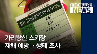 도권R)정선 가리왕산 3년차 재해 예방 사업 시행