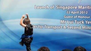 download lagu Wushu Vivo 2012 151 gratis