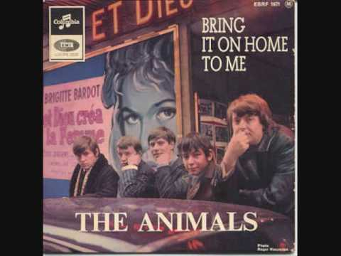 Animals - Lucille