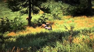 Farcry 4 - Animal Planet