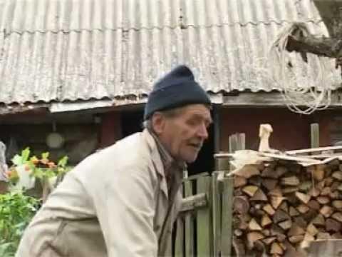 Загадки Рюрика (Zagadki Rurika)