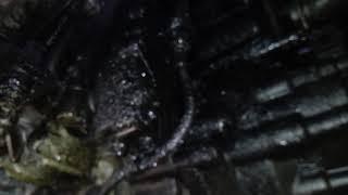 Vw transporter t5 oil leak suspect tandem vacuum pump