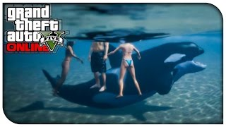 "GTA 5 Xbox One / PS4 - ""PLAY AS A KILLER WHALE!"" (New Online Custom Game Mode Idea) [GTA V]"