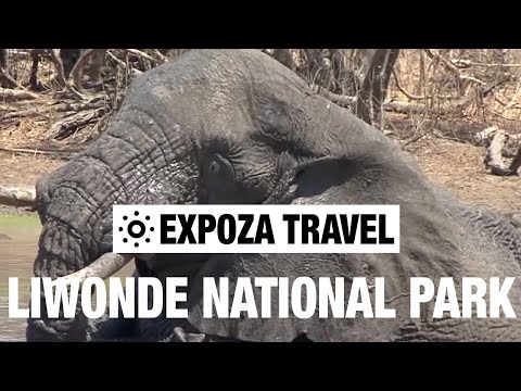 Liwonde National Park (Malawi) Vacation Travel Video Guide