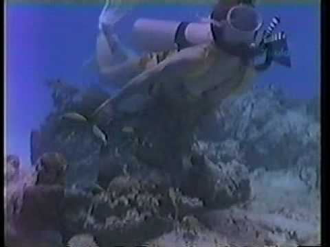 Vintage Scuba Latino movie Video