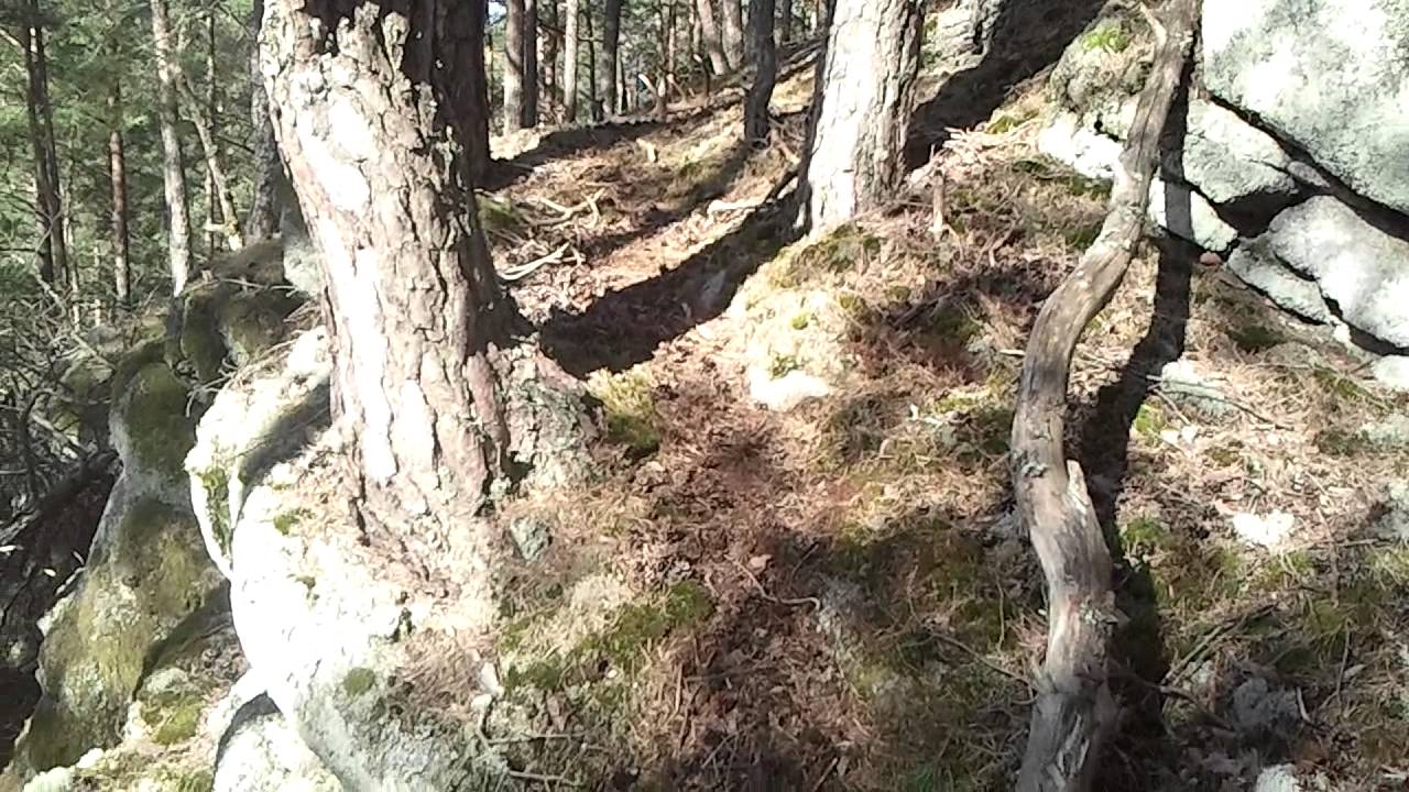 Image Bois De Cerf : bois de cerf 2014 – YouTube