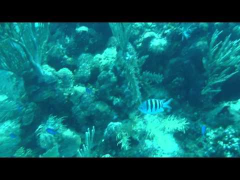 Jonny and Panny diving at Airport Cave off Utila   Honduras   September 2014