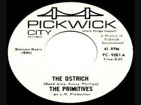 THE PRIMITIVES (LOU REED)- The Ostrich Video