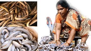 Amazing EEL FISH Cutting by Aunty || Special BOMMIDALA Fish Cutting&Cleaning in My Village Style