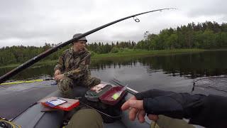 Окунь, Щука. Рыбалка на спиннинг - Июль 2017.