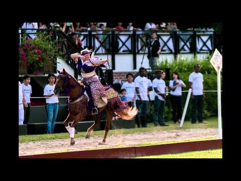 Medieval Horse Sports Australia 2014 Review